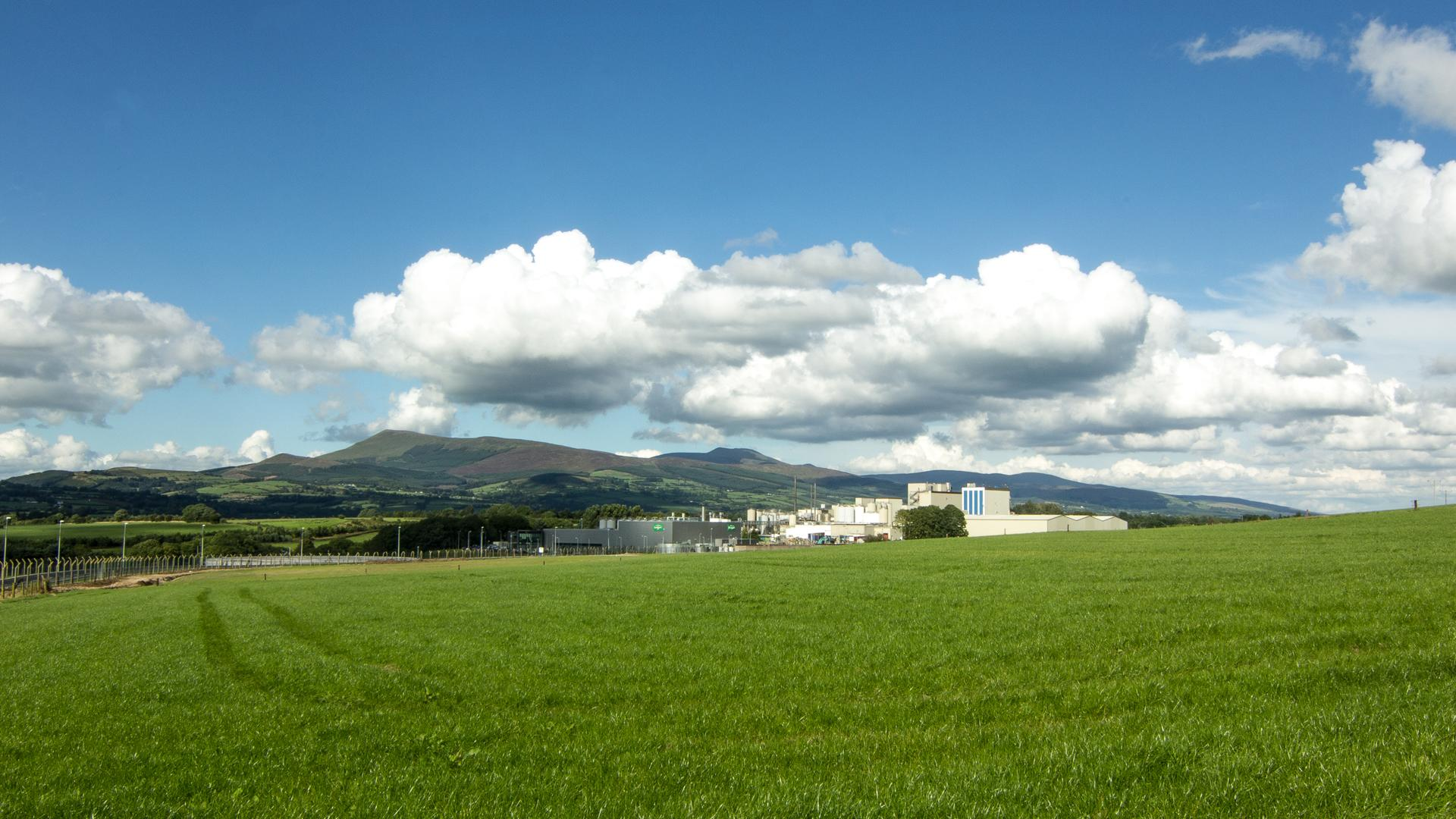 What Sustainability Means for Dairygold – Dairygold Adopts a New Policy