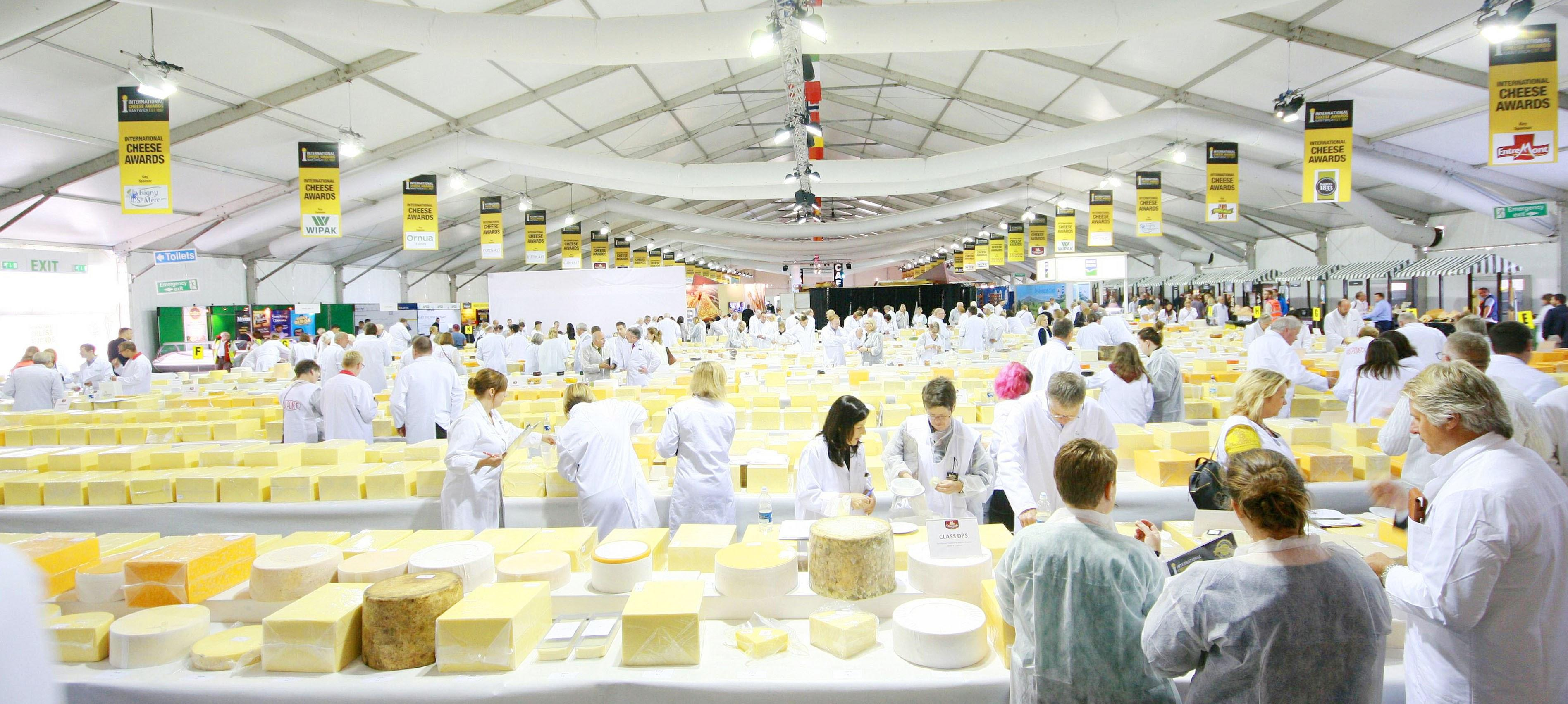 Dairygold Cheese – the Awards keep on coming!