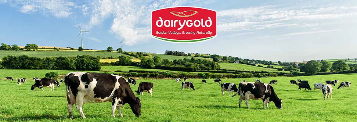 New Board Members for Dairygold
